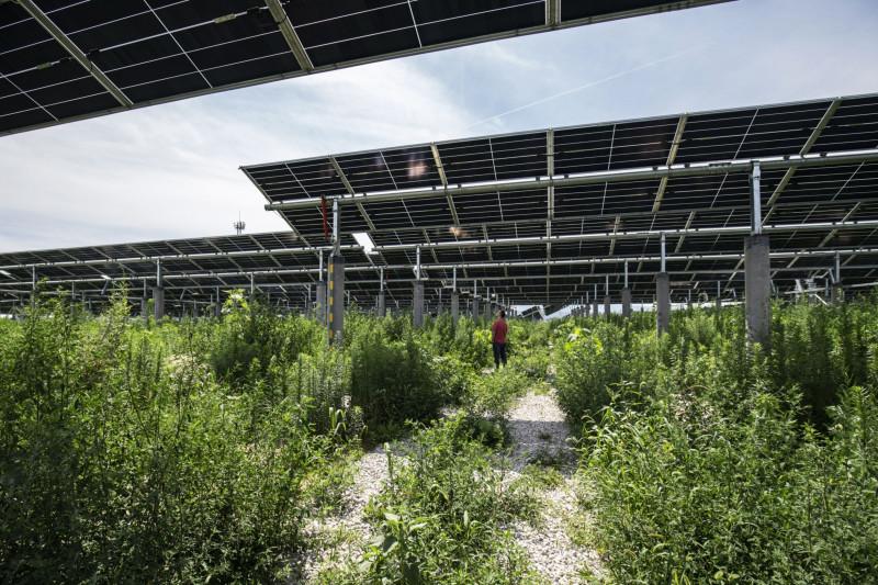 """محطة طاقة شمسية ذات ملكية مشتركة لشركتي """"لونجي غرين إينيرجي تكنولوجي"""" و""""تشاينا ثري غورجيز كورب"""" في تونغتشوان بالصين"""