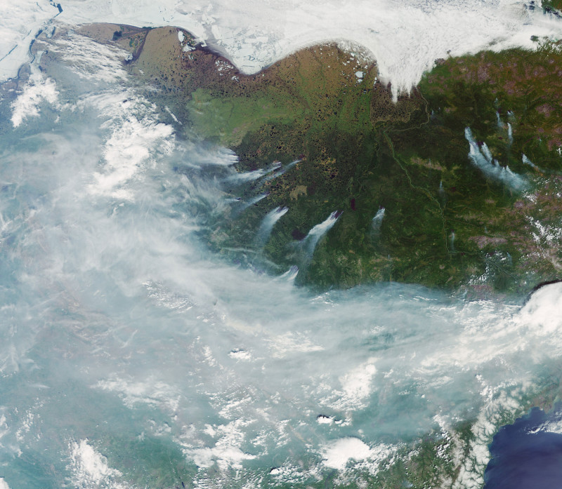 """التقطت بعثة """"كوبرنيكوس""""صورا لحرائق الغابات النشطة في جميع أنحاء سيبيريا، في يونيو 2020"""