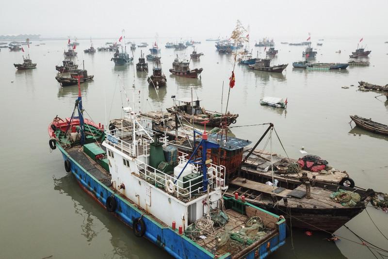 قوارب الصيد تعود إلى ميناء في ليانيونغانغ بالصين