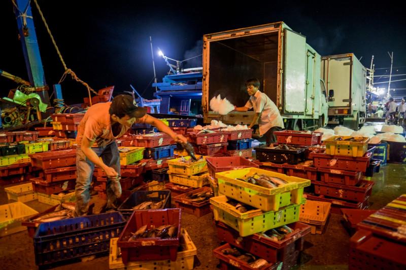 عمال يفرغون الأسماك من القارب في دانانج بفيتنام