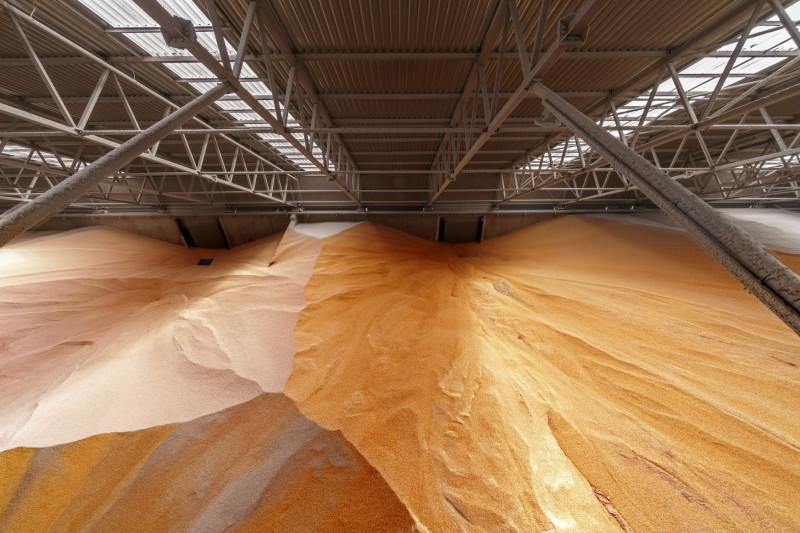 """مخازن الذرة في صومعة حبوب لشركة """"كارغيل"""" بأوكرانيا حيث ارتفع دخل الشركة بما يزيد على 4 مليارات دولار خلال الأشهر التسعة الأولى من سنتها المالية الحالية"""
