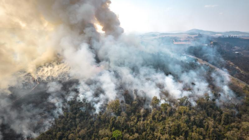 التهمت حرائق الغابات في البرازيل المزارع ودمرت أراضي أحد أكبر المنتجين الزراعيين في العالم