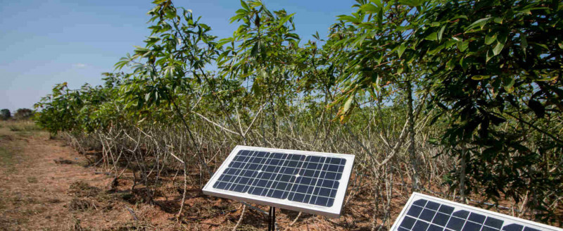 أحد مشروعات الطاقة الشمسية في ريف دولة أفريقية موله بنك التنمية الأفريقي