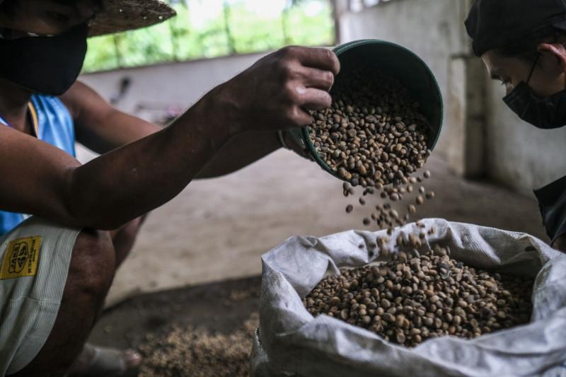 صناع القهوة يبحثون عن بدائل لحل أزمة الإمدادات